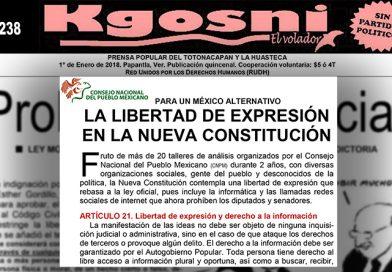 Gracias Kgosni por la mención de la Nueva Constitución