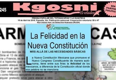 La Felicidad en la Nueva Constitución