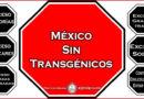 México sin transgénicos