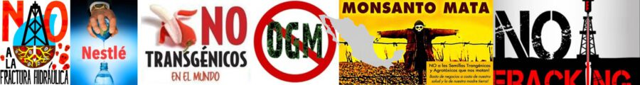 C:\Users\Iván\Desktop\OGM Monsanto.jpg